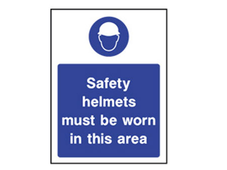 PPE Safety Helmet